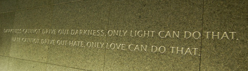 DARKNESS CANNOT DRIVE OUT DARKNESS.  ONLY LIGHT CAN DO THAT.  HATE CANNOT DRIVE OUT HATE. ONLY LOVE CAN DO THAT. ~ 1963